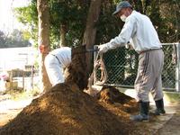 いずみ園肥料