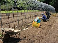 太陽の丘農業