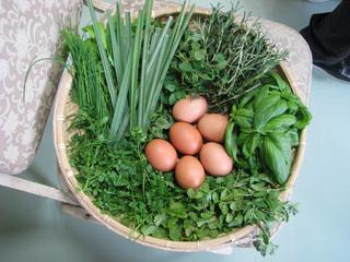 農作物・園芸商品